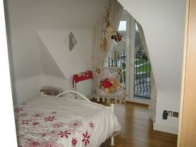 Large double room with ensuite in hendon, 3 mins walk to hendon tube and close to middlesex uni
