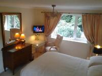 largedouble room to let