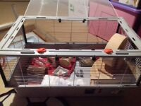 LARGE hamster cage + all equipments