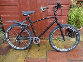 Custom City Bike