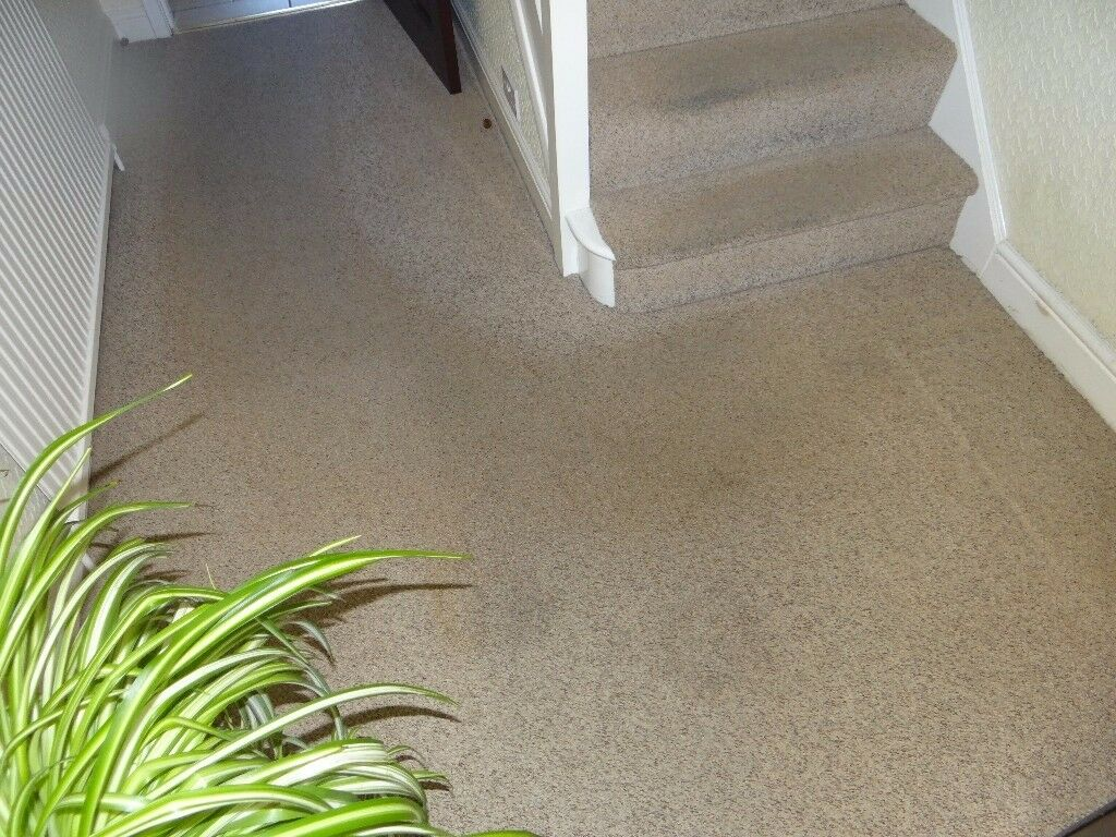 Hall stairs and landing carpeting