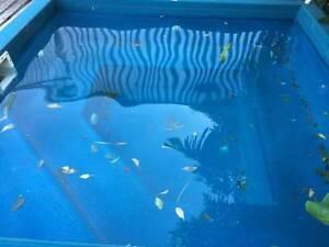 spa pool shell West Croydon Charles Sturt Area Preview
