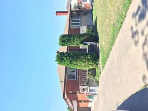 Spectacular 1-Bedroom/ Studio Student House for rent Thorold