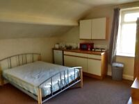 Modern, spacious studio flat with kitchen area and private bathroom.