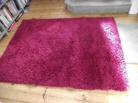 Raspberry Pink Next Rug