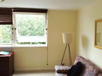 Big double room suitable for 2 people in quiet flat-share available (all bills included).