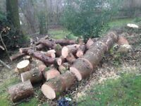 A bulk load of firewood