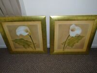 2 orchid pictures