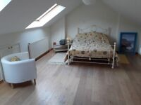 Large room available in converted attic in beautiful quiet location on the edge of a village.