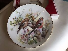 Royal Albert Plate 'Chaffinch' No.4 in a series of 4 plates from the Garden birds Series