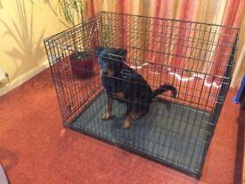 Giant Dog Cage