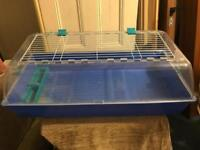 Plastic rabbit or Guineas pig cage + free delivery