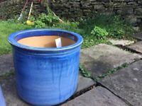 Brand new large plant pots