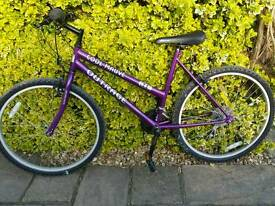 Adults and children bikes for sale