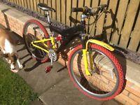 Retro/vintage Raleigh Max Air Ride Mountain Bike