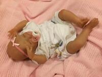 Beautiful realistic reborn baby girl. Brand new!!