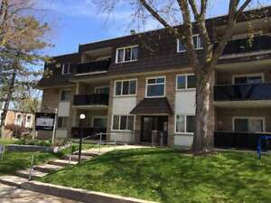 Renovated 3 Bedroom mins. from University of Guelph