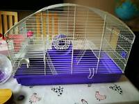 Hamster cage for Syrian(standard) hamster with Hamster ball, see saw and food containers