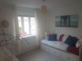 Nice Double Room Available