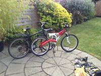 2 SUPERB CONDITION MOUNTAIN BIKES FOR SALE AT A FANTASTIC PRICE WITH ACCESSORIES COOL FOR SUMMER