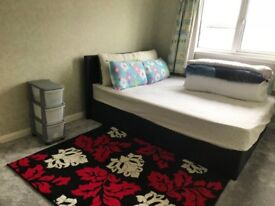 Double bedroom to rent in a vegetarian house
