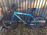 Blue Mountain Bike (Need to fix the rear flattire)