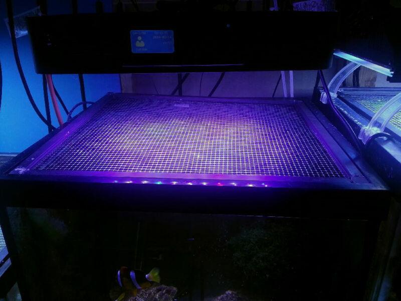 """Aquarium Top Clear Mesh Screen Netting Replacement 48""""x24"""" 1/4x1/4"""" Free Ship"""