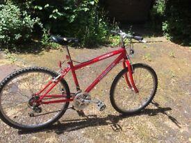 Bike, recently serviced