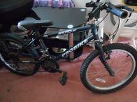 kids bicycle Macho 20
