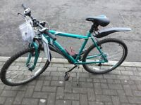 New with Tags ladies Mountain Bike with fitted extras