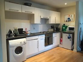 Large 2 bedroom 1st floor apartment Salford Quays (largest size in Quay 5) M5 3NE fully furnished