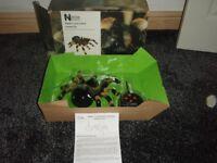 spider brand new in box