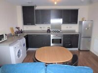 2 DOUBLE BED FURNISHED GROUND FLOOR FLAT+ PARKING*£750PCM*AVAILABLE NOW*NEW STOKE AREA*GAS C HEATING