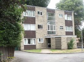 PRIME LOCATION SPACIOUS STUDIO APARTMENT WITH PARKING S10 £525 INCLUDING ALL UTILITY BILLS