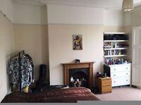 Huge Double Room in friendly Islington (Barnsbury) house share