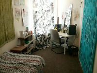 Single and double rooms available in houseshare - St Andrews
