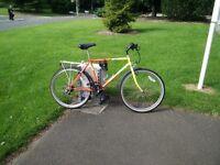 Colourful bike for sale