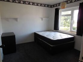 Double room in 3 bed house with one couple and a gorgeous dog