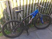Men's Supernova Silver Fox Mountain Bike