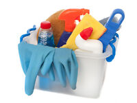 Domestic cleaning / Windows cleaning
