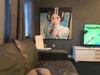 Huge Star Wars Princess Leia Painting 122x122cm