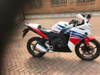 Honda CBR125R Ross White