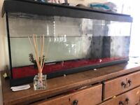 100 litre fish tank with filter