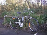 ladies vintage 3 speed cycle,new tyres 21 in frame, puch companion, tidy bike.