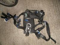 Assorted Climbing Harness
