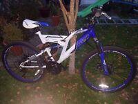 Junior Girls Mountain Bike 18 Gears