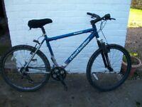 Claud Butler Mountain Bike {21 Speed} Ravana 7005 Alloy Series