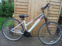 bike apollo endeavour hybird sport