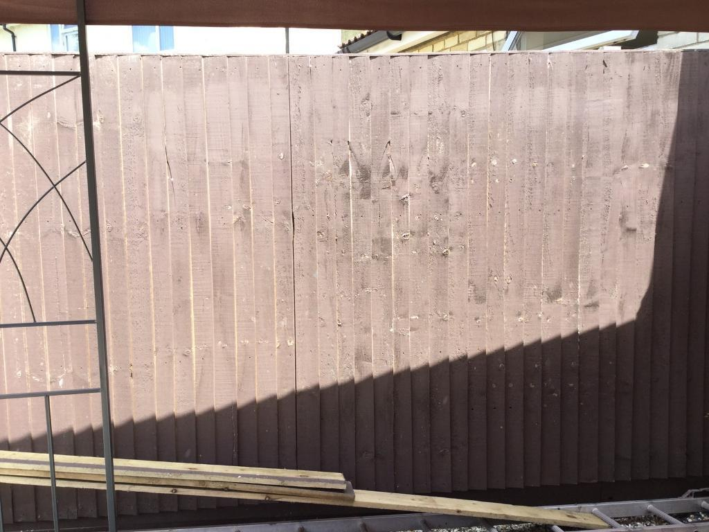 8x 6x6 fence panels in ipswich suffolk gumtree 8x 6x6 fence panels image 1 of 2 baanklon Images