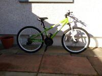 Boys carerra blast bike
